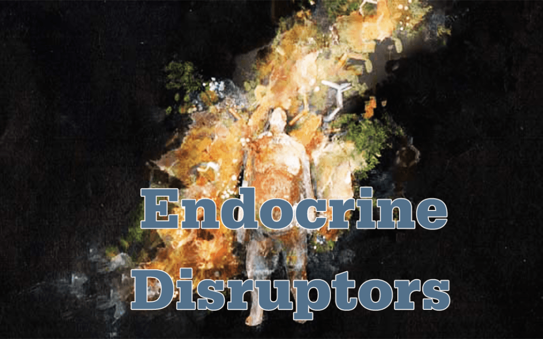 Functional Endocrinology: Endocrine Disruptors