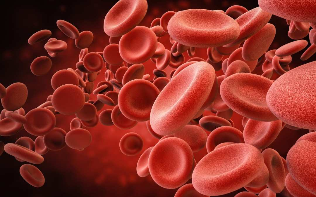 Functional Neurology: Iron Deficiency Anemia and Brain Health