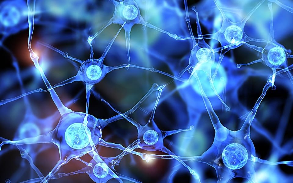 Neurologia funzionale: differenze tra dopamina e serotonina