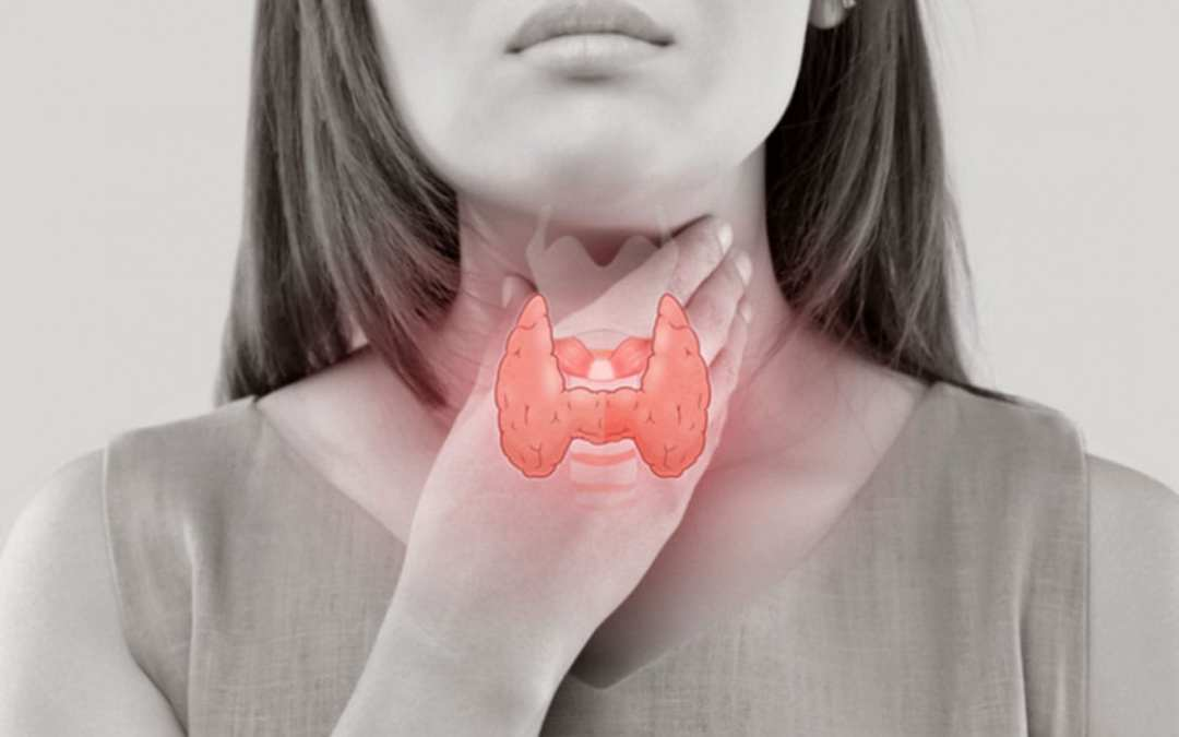 Functional Neurology: Obesity and Thyroid Dysfunction