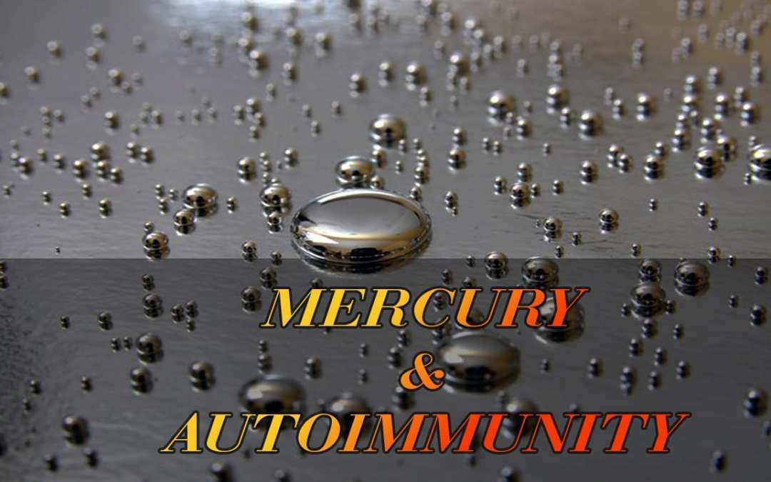 Functional Endocrinology: Mercury and Autoimmune Connection