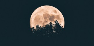 Estudio luna llena