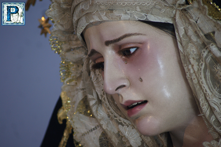 EN VIDEO: «Rosario vespertino de la Virgen del Amparo»