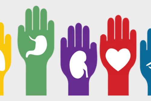 Conferencia para concienciar sobre la donación de órganos