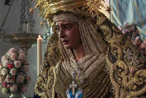 La Hermandad de la Borriquita sigue trabajando en la Coronación Canónica de la Virgen de la Estrella