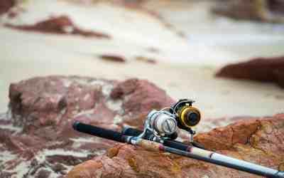 Cañas de pesca: Carbono o Fibra de vidrio