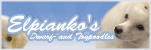 elpiankos_banner