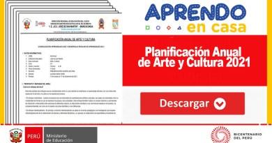 Descargue Planificación Anual de Arte y Cultura 2021