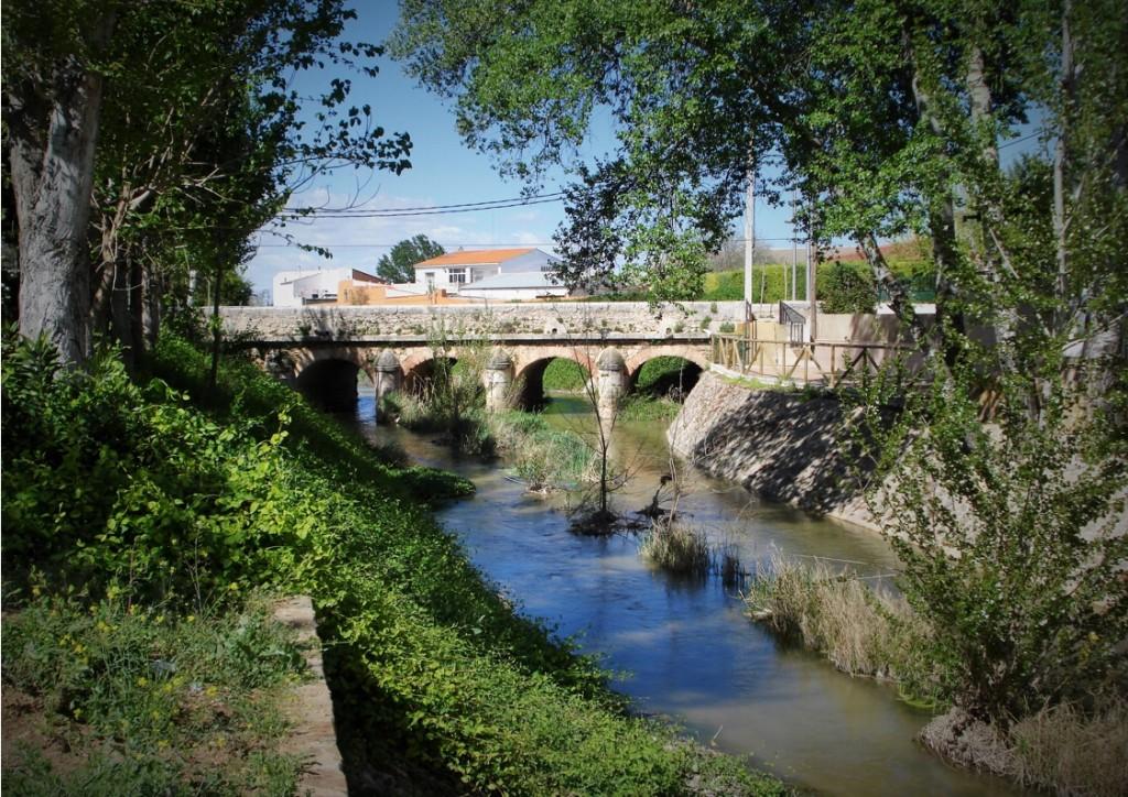 Puente del Camino Real