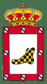 BANDERA EL PROVENCIO (6)