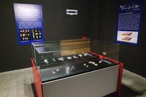 Museo Paleolítico