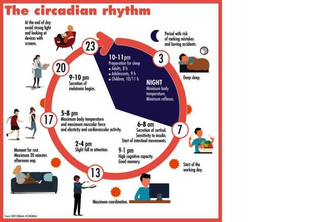 Ruled by the biological clock | IRENE CASELLAS | Features | Catalonia Today