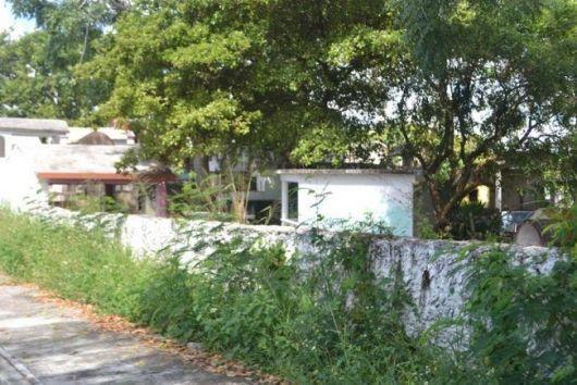 cementerio-enmontado2