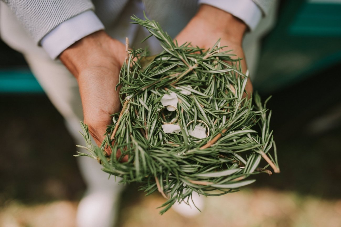 nido para los anillos con hierba y ramas