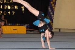 gala gimnasia 014