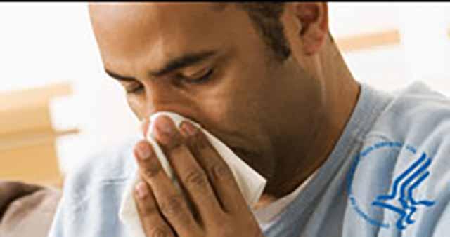 gripe a1h1