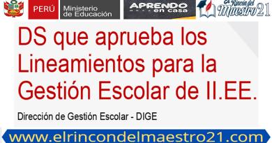 LINEAMIENTOS PARA LA GESTIÓN ESCOLAR 2021 EN LAS INSTITUCIONES EDUCATIVAS DE EBR.