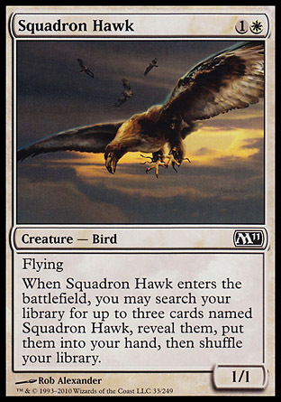 HALCON DE ESCUADRON / SQUADRON HAWK (M11)