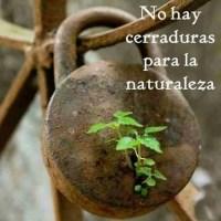 No Hay Cerraduras Para La Naturaleza...