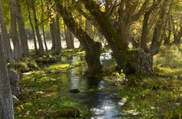 Rutas y senderismo en Ua y Cuenca