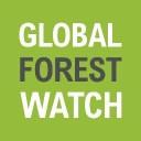 global forest watch logo