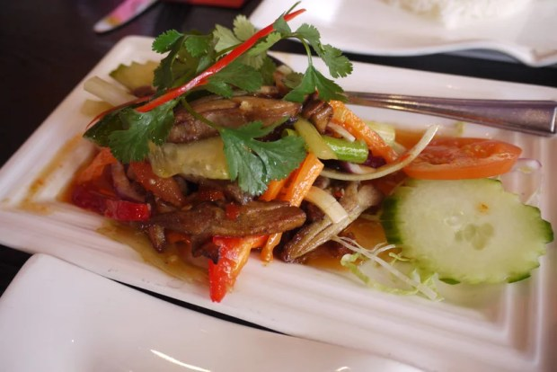 Thai spicy salad with duck