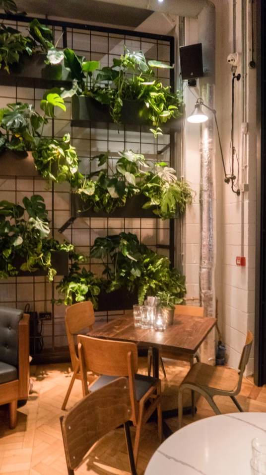Counter House plant wall