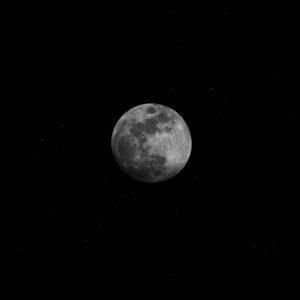 LUNA NUEVA VISIBLE «Luna Nueva Tradicional»