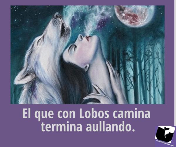 El Espíritu del Lobo:  El Maestro – el  Guía hacia lo Sagrado