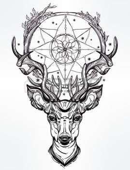 ciervo-estrella