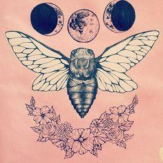 lluna-abella
