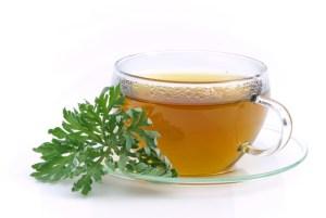 Tee Wermut - tea wormwood 03