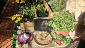 Mi altar en mi jardín