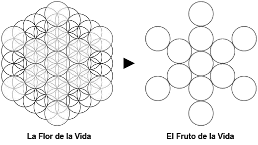 FruitofLife