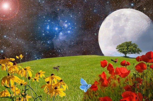 Luna Llena de las Flores. Las Fiestas Florales.