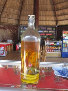 Snake Liquor at the Cu Chi Tunnels