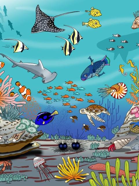 Natuurplaat koraalrif