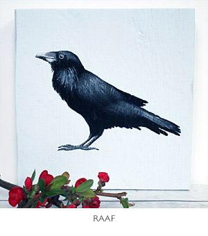 vogelkunst