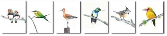 Kaarten met vogels