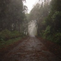 Lonely Roads - Chapter 8