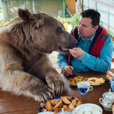 Adopted Family Bear Sits At Dinner Table, Helps With Household Chores & Even Cuddles