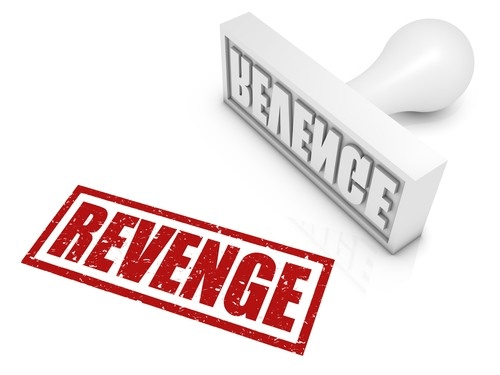The Stolen Revenge - elsieisy blog