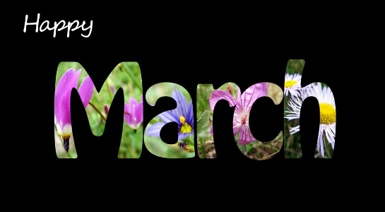 March: A Month Filled with Happiness and Anxiety - elsieisy blog