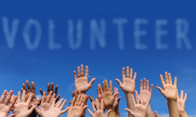 To volunteer or not to volunteer - elsieisy blog