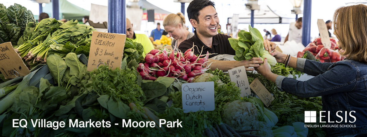 Banner-new-template_EQ-Village-Markets-Moore-Park