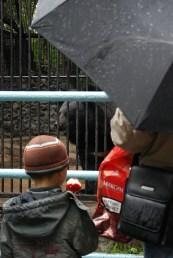 Novosibirsk zoopark dierentuin mensjes kijken