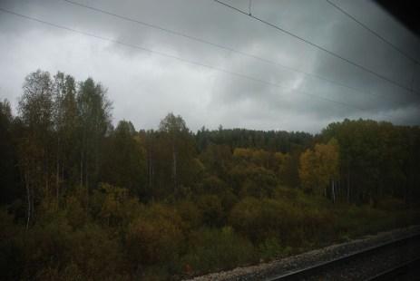 Trein Novosibirsk naar Irkutsk uitzicht