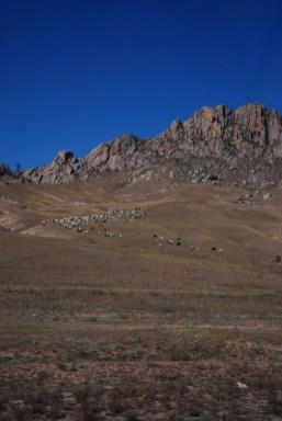 Terelj nationaal park Mongolië