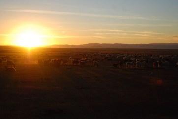 Zonsondergang Mongolië Ulaanbaatar