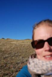 Hustai nationaal park Mongolië przewalskii paarden selfie